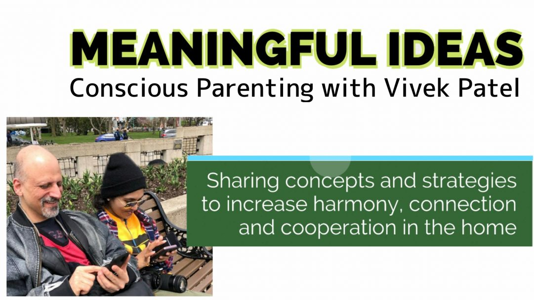 Meaningful Ideas – Conscious Parenting with Vivek Patel